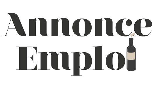 Logo Annonce Emploi