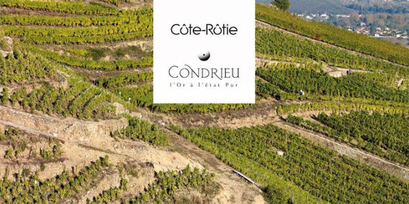 Dégustation Côte-Rotie et Condrieu